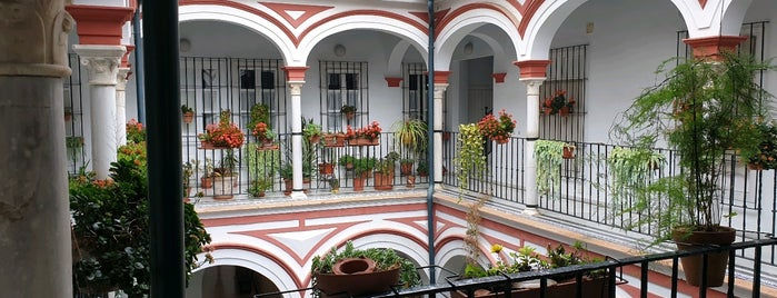 Alfalfa is one of Sevilla/Córdoba/Monesterio.