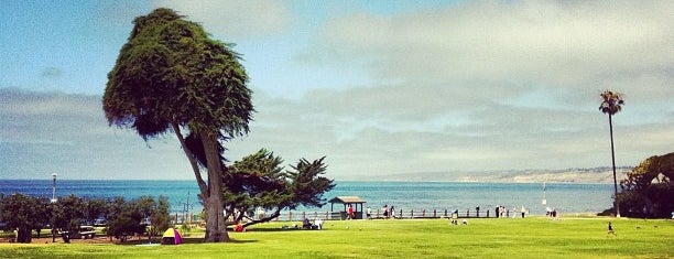 Ellen Browning Scripps Park is one of Things to do in San Diego.