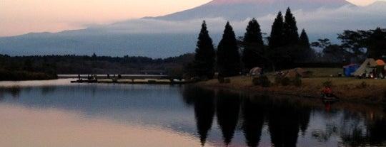 田貫湖キャンプ場 南側テントサイト is one of Favorite Campground.