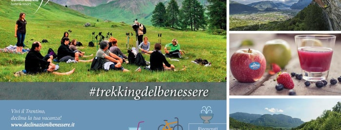 Vitanova trentino Wellness  - hotel & resort is one of #trekkingdelbenessere.