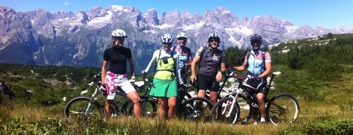 MTB Adamello Brenta is one of Attività Family.