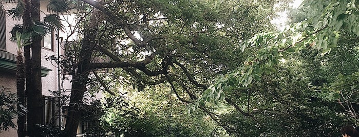 源兵衛川親水公園 is one of 伊豆.