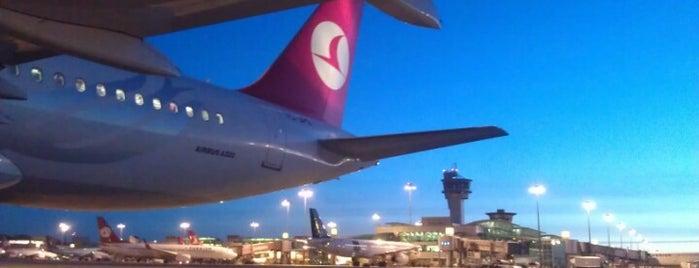 Internationales Terminal (Ankunft) is one of İstanbul Atatürk Airport.