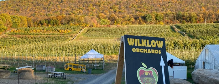 Wilklow Orchards is one of Mid Hudson valley.