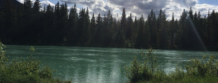 Bow River Trail is one of Locais salvos de Mohammed.