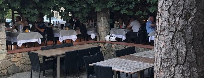 Chez Edgard is one of สถานที่ที่ Alexander ถูกใจ.