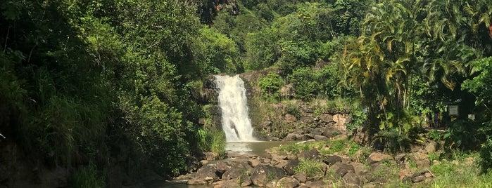 Waimea Falls is one of Lugares favoritos de Emily.