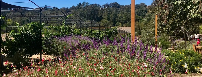 Old Creek Ranch Winery is one of Posti che sono piaciuti a Michael.