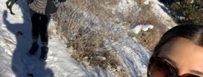 Mt. Galbraith Park is one of Denver, CO 🌤 🏞🍺.