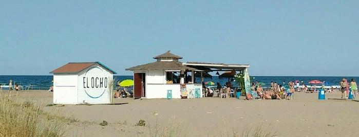 Chiringuito El Ocho is one of Orte, die Ernesto gefallen.