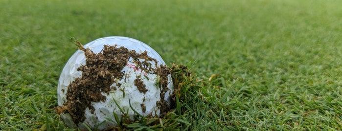 Chick Evans Golf Course is one of สถานที่ที่ Brandon ถูกใจ.