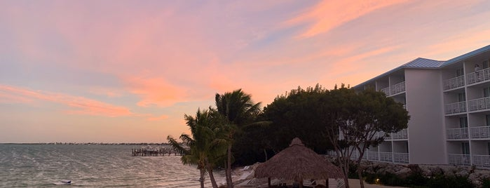 Baker's Cay Resort Key Largo, Curio Collection by Hilton is one of Florida Keys.
