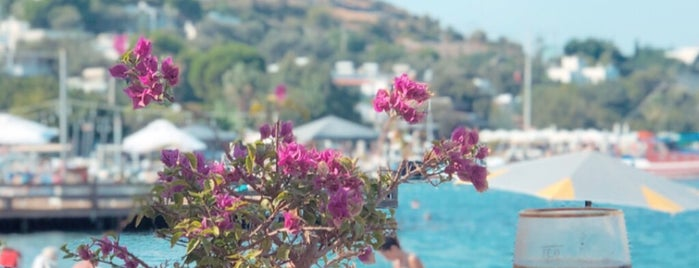 Faros Bodrum is one of Bodrum.
