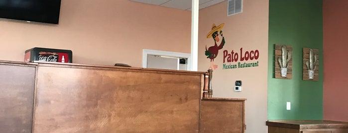 Pato Loco is one of Posti che sono piaciuti a Marni.