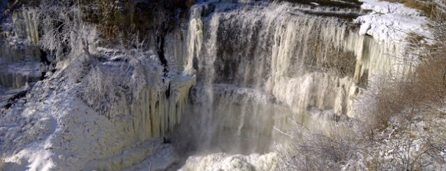 Webster's Falls is one of Trails & Hikes.