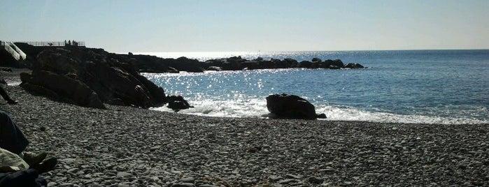 Spiaggia Di Quinto is one of Lieux qui ont plu à Daniele.