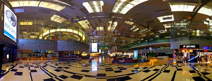 Aeropuerto Internacional de Singapur Changi (SIN) is one of my living rooms.