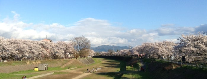 草津の渡し is one of Posti salvati di Kazuaki.