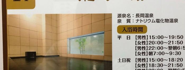 天然温泉 龍馬の湯 is one of 訪れた温泉施設.