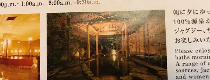 ホテル松政 大浴場 千人湯 is one of 訪れた温泉施設.