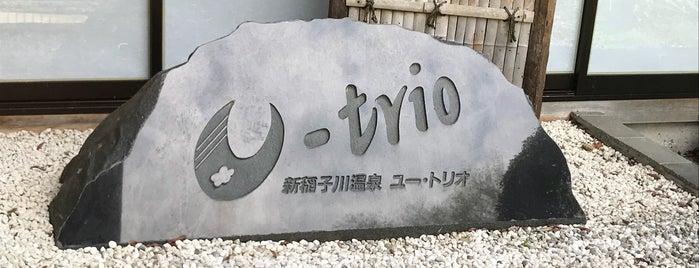 新稲子川温泉 ユー・トリオ is one of 訪れた温泉施設.