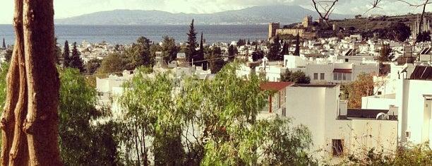 El Vino Hotel & Suites is one of Turkey Recs.