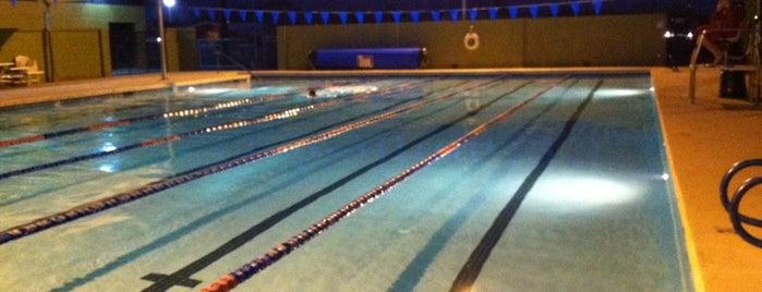 Phoenix Sunfish Swim Practice @ YMCA is one of Lieux qui ont plu à Robert.