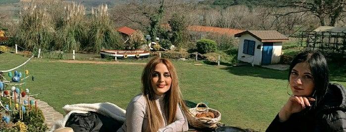 Meşe Yaprağı Restaurant is one of สถานที่ที่ merve ถูกใจ.