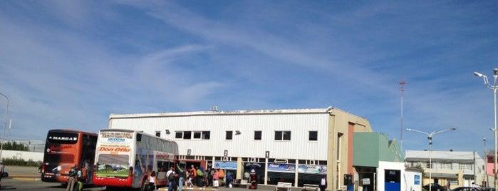 Terminal de Ómnibus is one of Patagonia (AR).