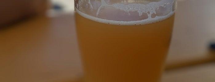 ParrotDog Brewery is one of Tempat yang Disukai Cusp25.