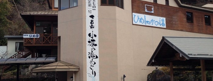 巌立峡ひめしゃがの湯 is one of 訪れた温泉施設.