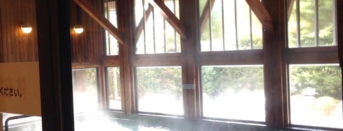 飛騨川温泉 しみずの湯 is one of 訪れた温泉施設.