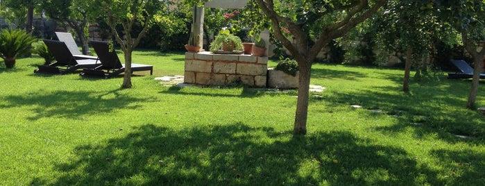 Il giardino del Tiglio is one of Salento - Luoghi.