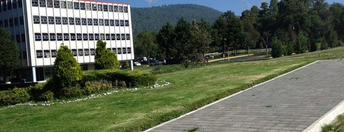 CICS- UMA IPN is one of Tempat yang Disukai Alonso.
