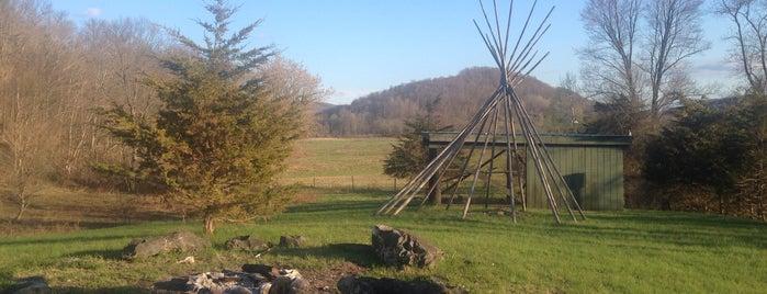 Herondale Farm is one of Berkshires.