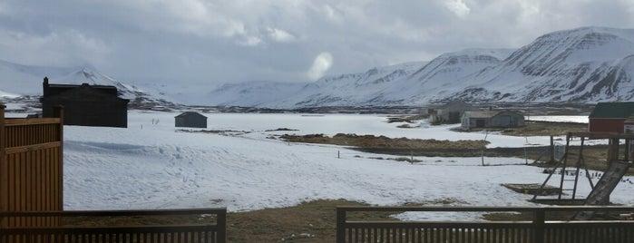 Samtún, Haganesvík is one of Iceland 2017.