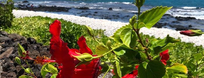 Makalawena Beach is one of Hawaii.
