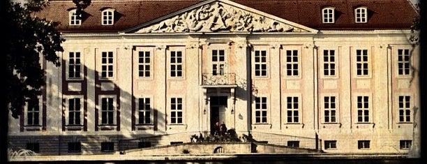 Schloss Friedrichsfelde is one of Deutschland | Sehenswürdigkeiten & mehr.