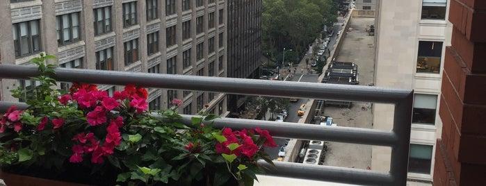 Hotel Giraffe Roof Deck & Garden is one of Lugares guardados de Lauren.