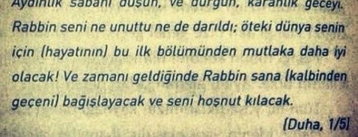 Palex Geri Dönüşüm Çözümleri A.Ş. is one of JOY : понравившиеся места.