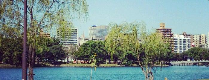 Ohori Park is one of Katsu : понравившиеся места.