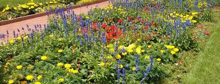 Munsinger and Clemons Garden is one of Posti che sono piaciuti a Glenn.