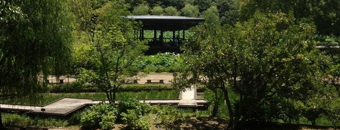 日本庭園 is one of Lieux qui ont plu à Saejima.