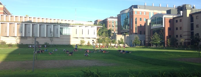 SUNY-ESF Quad is one of 44 Things at Syracuse University.