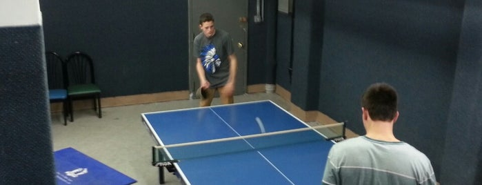 Wang Chen Table Tennis Club is one of NYC Outings.