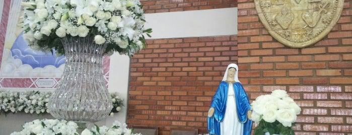 Capela Nossa Senhora das Graças da Medalha Milagrosa is one of สถานที่ที่ Adriana ถูกใจ.