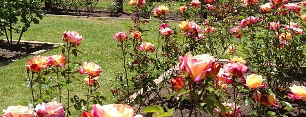 Rose Garden is one of When you travel.....