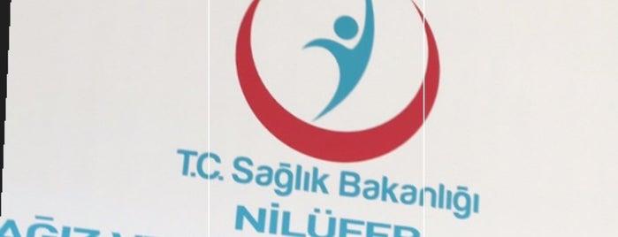 Nilüfer Ağız ve Diş Sağlığı Merkezi is one of Tempat yang Disukai Semiha.