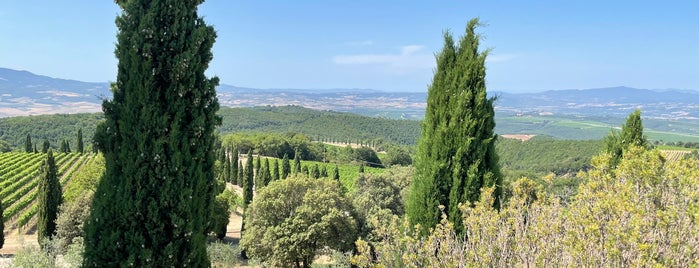 Poggio Antico Montalcino is one of Montalcino.