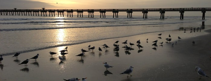 City of Jacksonville Beach is one of Florida 2014.